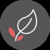 icon_eco-resp